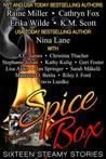 Spice Box: Sixteen Steamy Stories