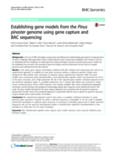 Establishing gene models from the Pinus pinaster genome using gene capture and BAC sequencing