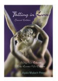 Falling in Love: Why We Choose the Lovers We Choose, 2nd edition