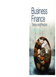 Business Finance: Theory and Practice