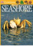 Seashore (DK Eyewitness Books)