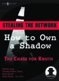 Network Hacking and Shadows Hacking Attacks