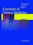 Essentials of Chinese Medicine Vol.2.pdf