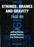 Strings, Branes and Gravity