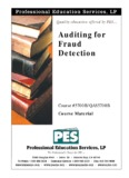 Auditing for Fraud Detection